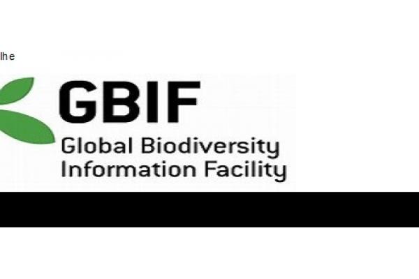 GBIF Abre Vaga para Administrador de Dados. Candidate-se!