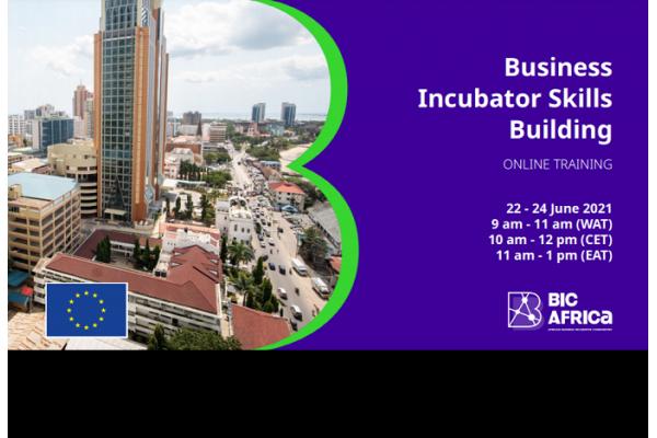 BIC África realiza Treinamento Online para Desenvolvimento de Habilidades de Incubadora de Empresas - Inscreva-se até o dia 17 de Junho
