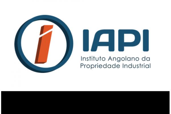 """IAPI Oraganiza Seminário sobre """"Garantia e Valorização dos Direitos de Propriedade Industrial"""""""