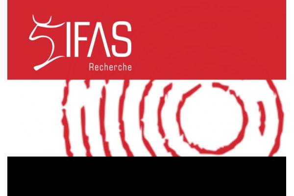Chamada de candidaturas de 2020 para apoio à investigação na África Austral do IFAS